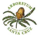 arboretum logo1
