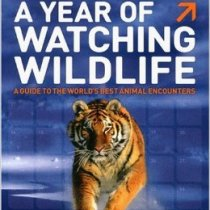 A year watching wildlife