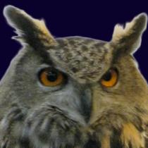 OwlSlider