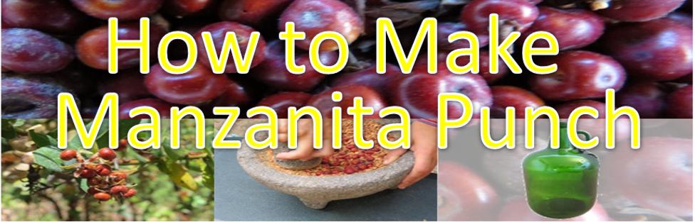 How to Make Manzanita Punch