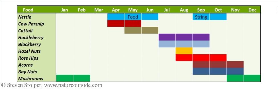Make a Wild Foods Calendar (Free Download)