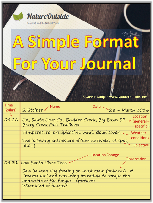 infographic about how to keep a nature journal