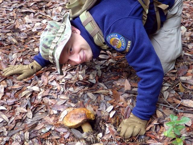 docent and boletus mushroom