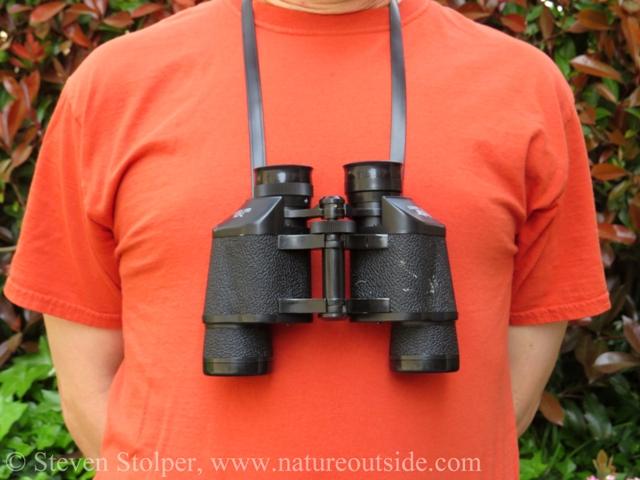 Person wearing Porro prism binoculars around neck