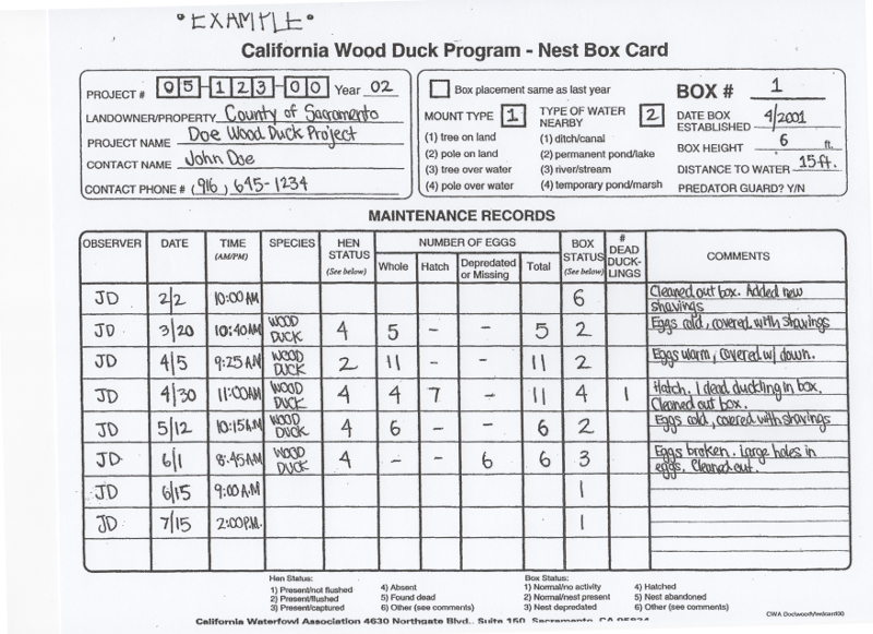 wood duck program data sheet