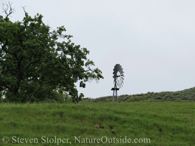 JB Ranch windmill Sunol Regional Wilderness