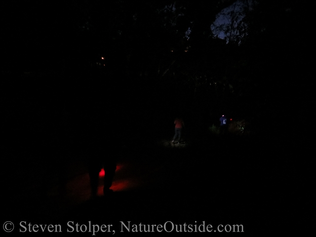 Hiking to the creek at night