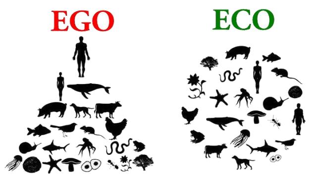 man ego relationship
