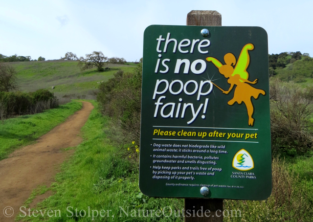 There Is No Poop Fairy Humor Natureoutside